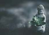 istock Little Buddha in Meditation with Plant 1255986113