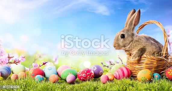 istock Little Bunny In Basket With Decorated Eggs - Easter Card 922792504