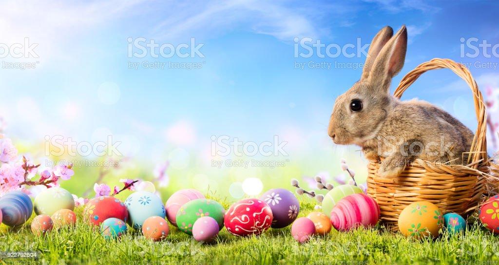 Kleines Häschen In Korb mit dekorierten Eiern - Osterkarte – Foto