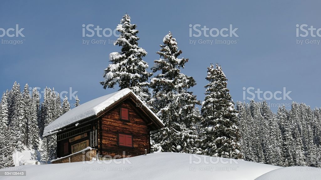 Little chalet and firs stock photo