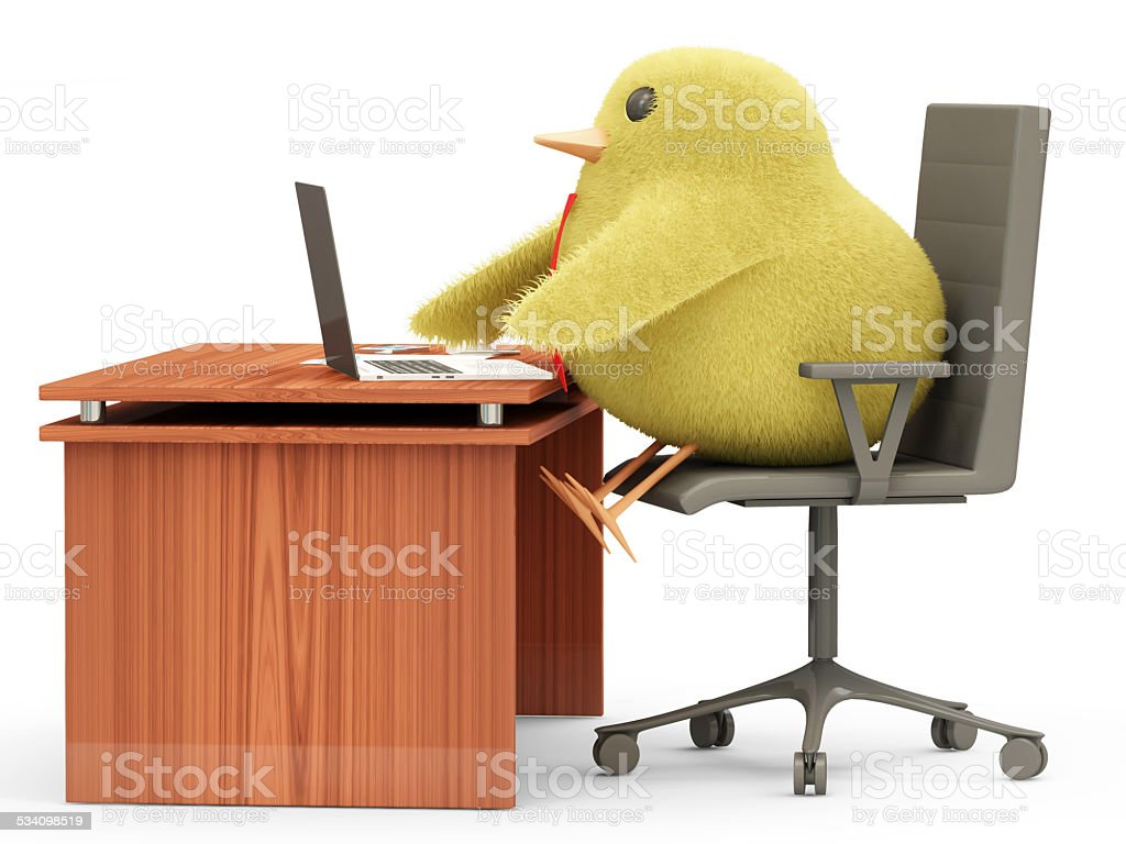 Little Chicken Sitting at the Table stock photo