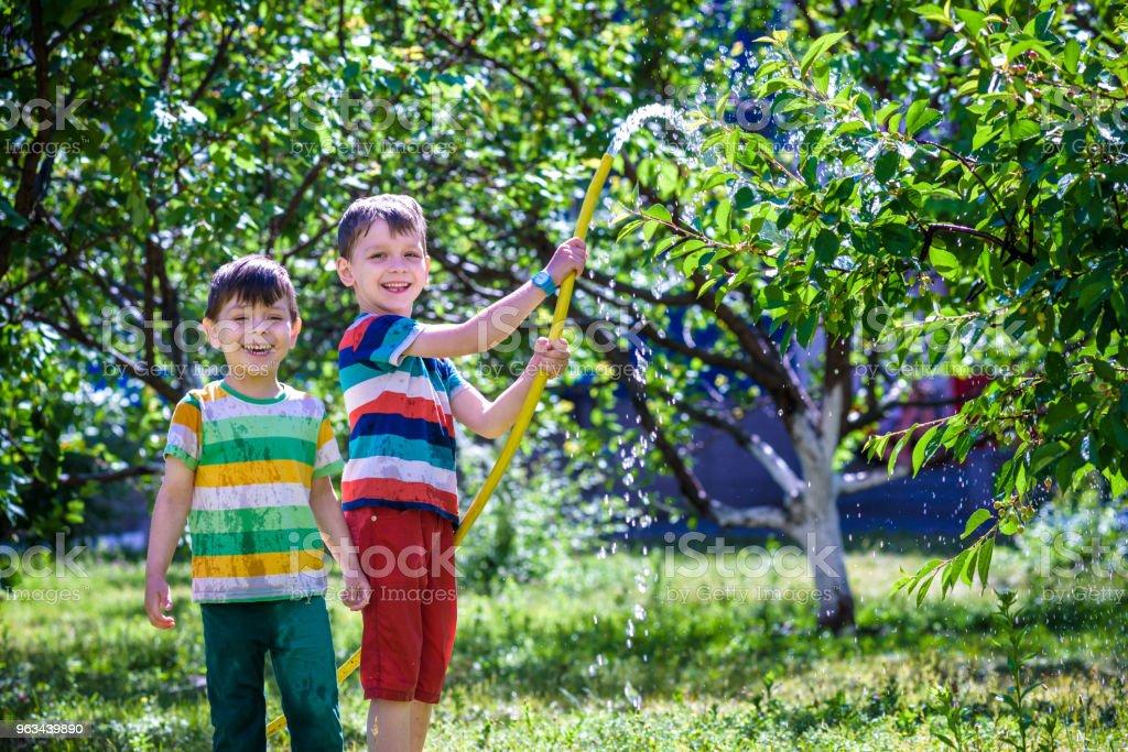 Małe dziecko, urocza blondynka mały chłopiec, podlewanie roślin, piękne jabłonie - Zbiór zdjęć royalty-free (Codzienne ubranie)
