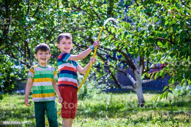 Małe Dziecko Urocza Blondynka Mały Chłopiec Podlewanie Roślin Piękne Jabłonie - zdjęcia stockowe i więcej obrazów Codzienne ubranie