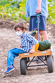 Caucasian Little child boy and his dad picking up pumpkins at a pumpkin patch wearing a protective face mask