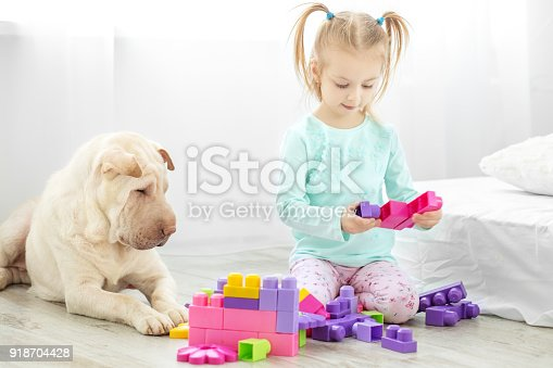 istock A little child is playing with developing toys in the room. The dog lies. The concept of lifestyle, childhood, upbringing, family. 918704428