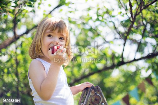 Cute little child picking peaches.
