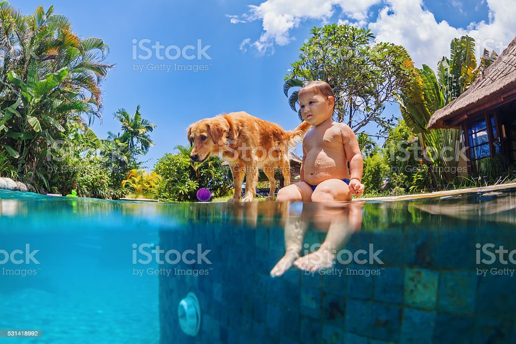Little child swim with dog in blue swimming pool stock photo