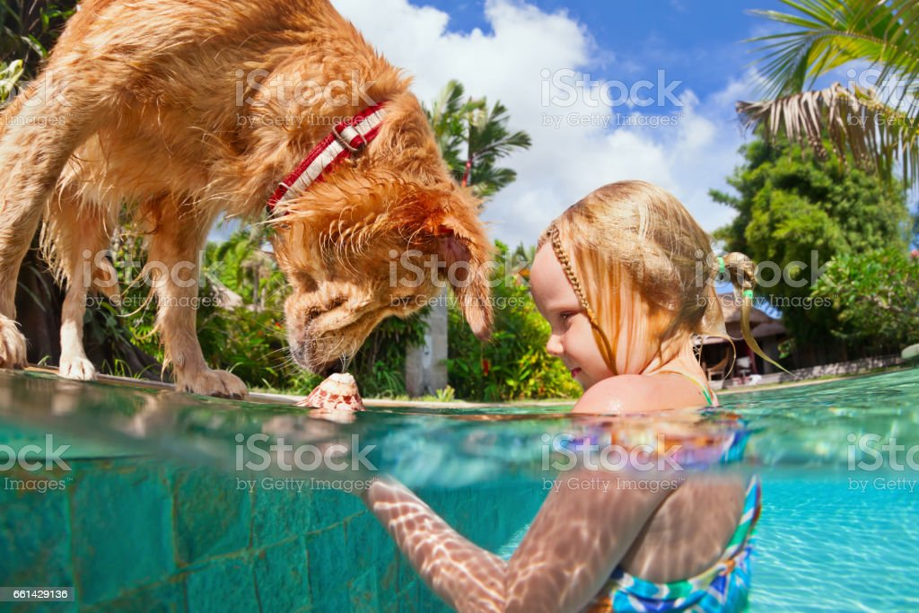 Little child swim with dog in blue swimming pool. stock photo