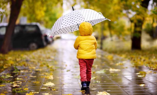 Niño caminando en el parque de la ciudad en día de otoño lluvioso - foto de stock
