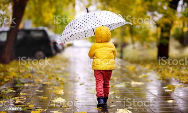 Photo of Little child walking in the city park at rainy autumn day