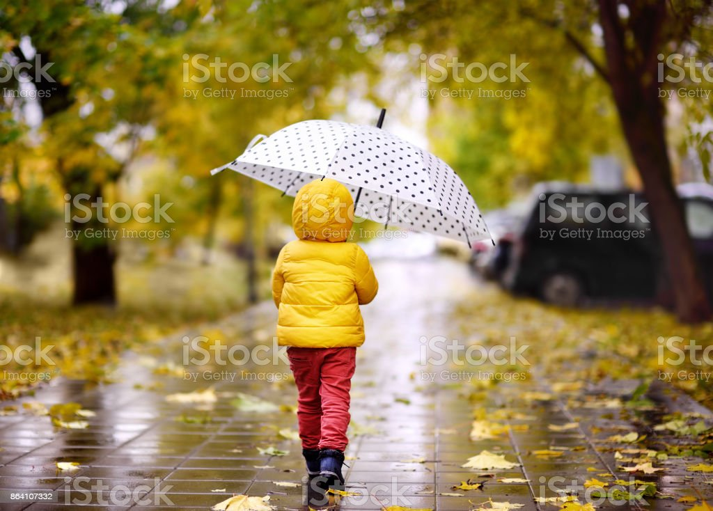 Little child walking in the city park at rainy autumn day royalty-free stock photo