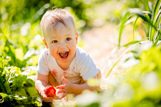 Little child with strawberry stock photo