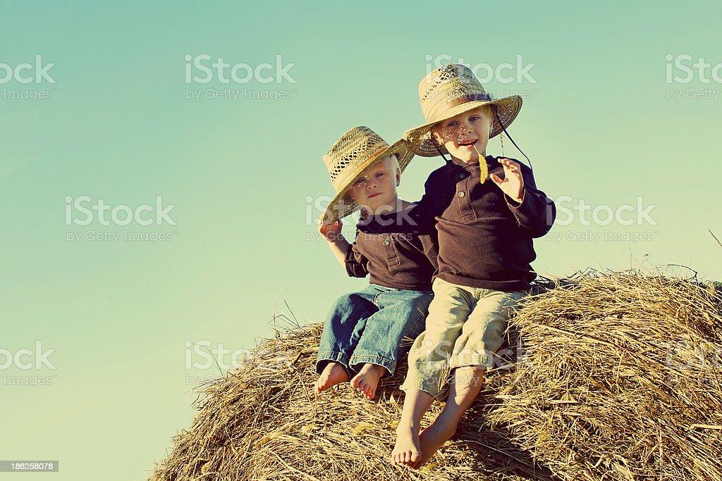 Little Country Boys on Farm stock photo