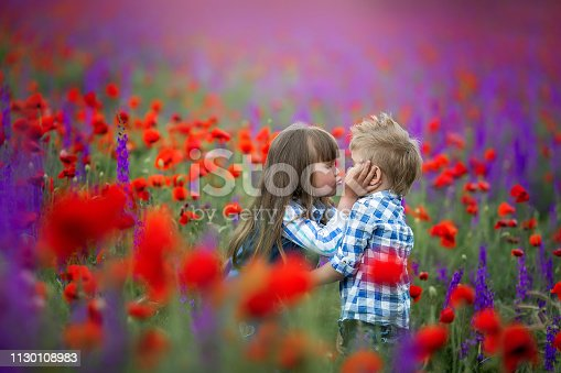 Little curly blond boy and girl play in poppy flower field. Child picking red poppies. Toddler kid in summer meadow. Family vacation in the country. Children pick flowers, hug and kiss. Siblings love