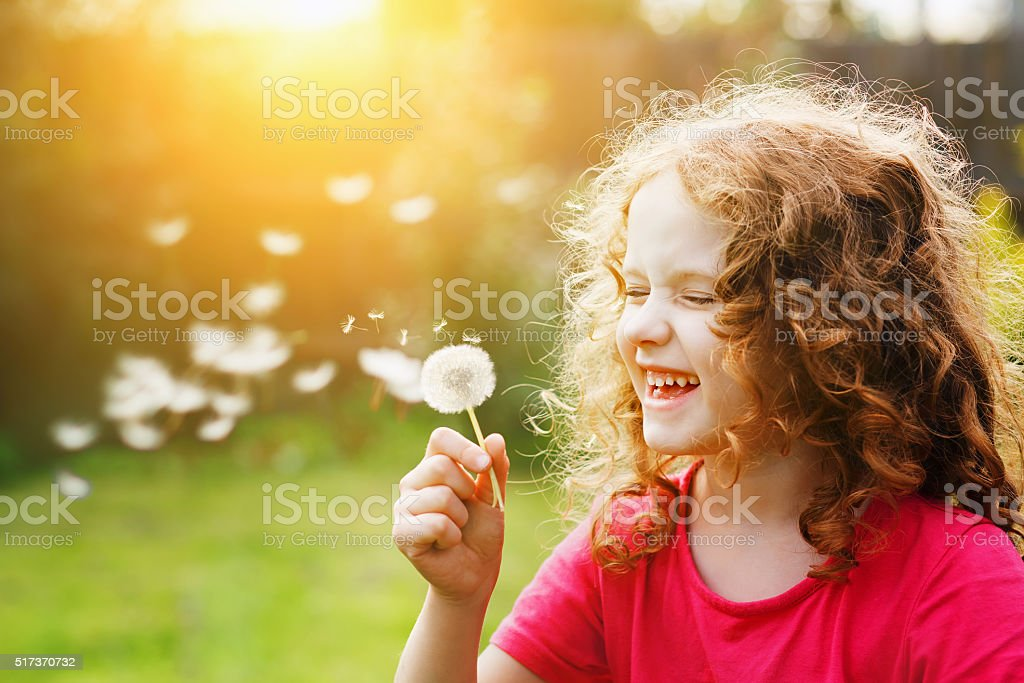 Little curly girl blowing dandelion and laughing. stock photo