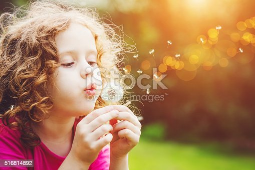 istock Little curly girl blowing dandelion. 516814892