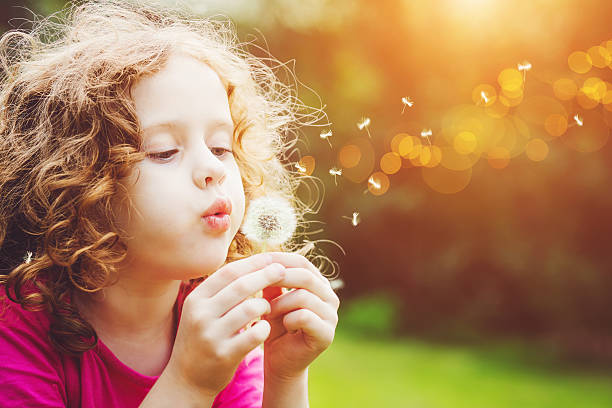 little curly girl blowing dandelion. - paardenbloem stockfoto's en -beelden