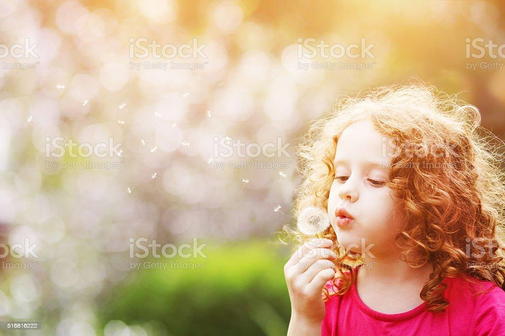 Little curly girl blowing dandelion in summer park.