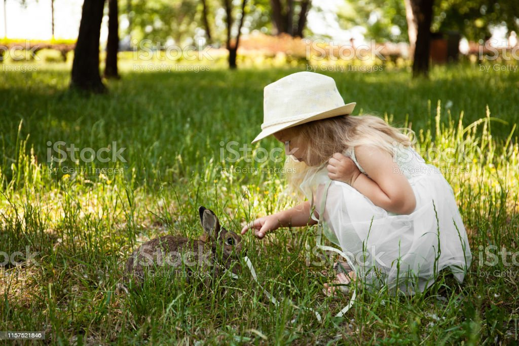 Little cute baby girl walking a pet rabbit, care and living with...