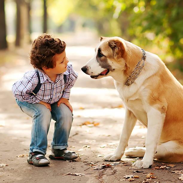 Kleine süße Junge spielt mit seinem Hund – Foto