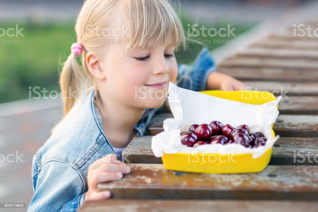 Little cute caucasian blond girl looking at lunchbox with fresh tasty sweet cherries on wooden table outdoors.Kid going to eat sweet organic berries in platic box. Children healthy food concept stock photo