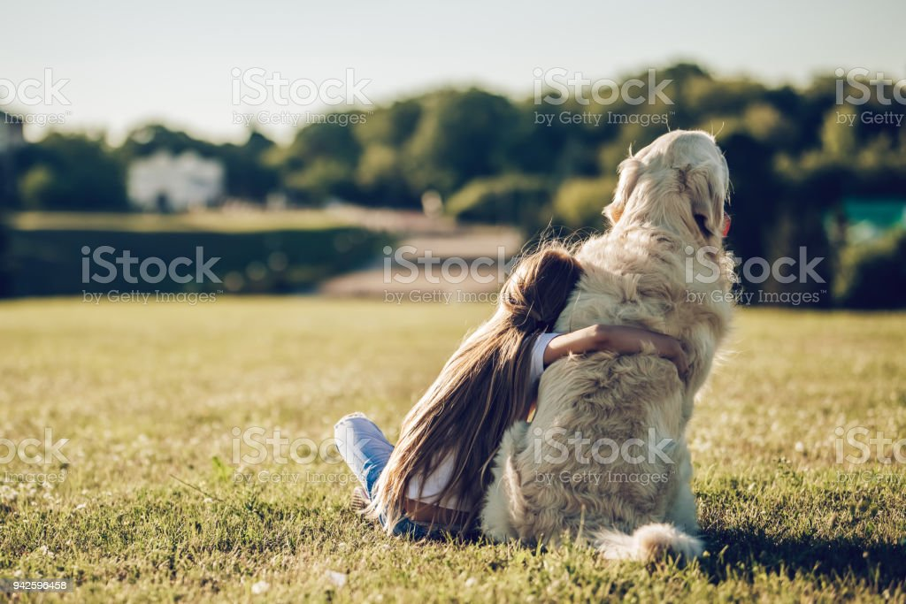 Little cute girl with dog stock photo