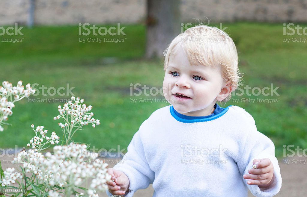 Little cute toddler boy with blond hairs royalty-free stock photo