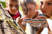istock Little explorers in nature 822071790
