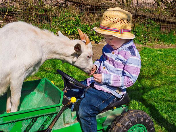 Kleine farm Kind und Ziegenleder – Foto