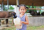 Little farmer girl holding milk bottle in farm. Feeding the buffalo in farm.