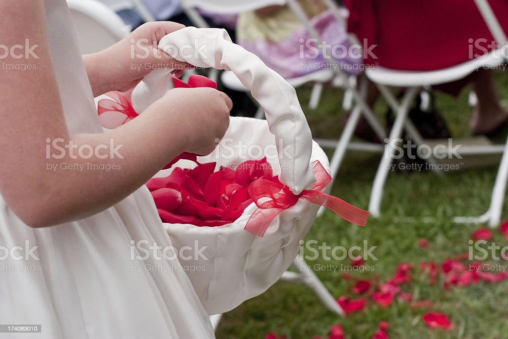 Little Flower Girls Tossing Rose Petals During Wedding Ceremony stock photo
