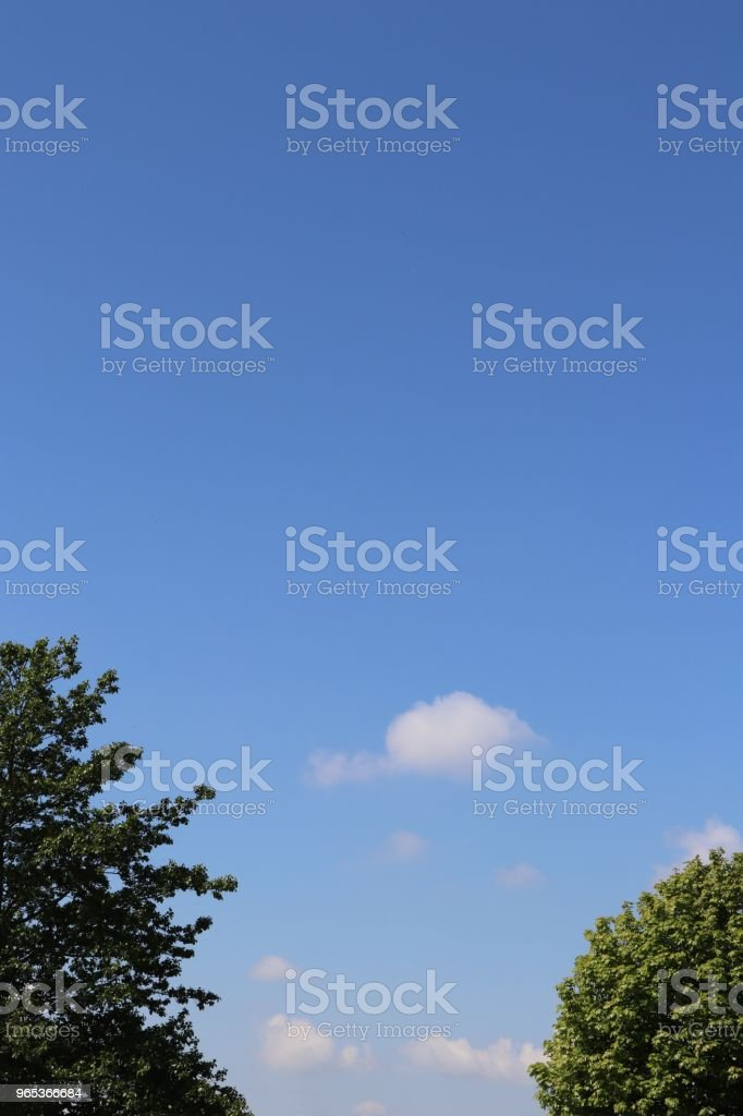 小蓬鬆的白雲, 對藍天, 在前景和複製空間的樹木 - 免版稅全畫面圖庫照片