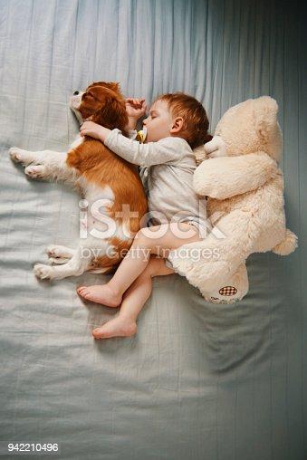 942206906 istock photo little friends taking a nap 942210496