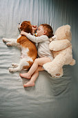 istock little friends taking a nap 942210496