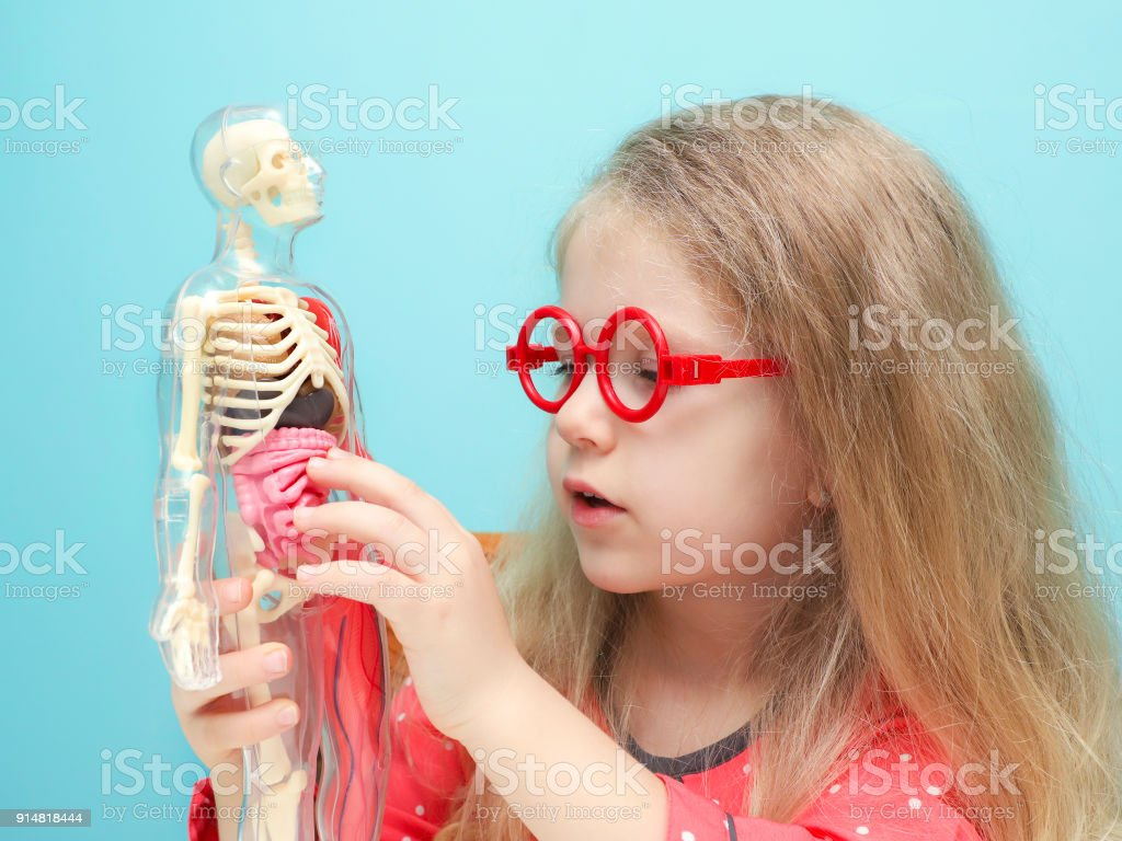 Little Funny Blonde Girl With Red Glasses Explore The Structure Of