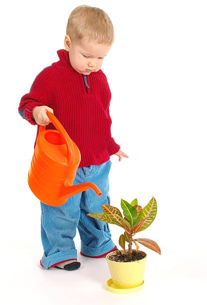 어린 gardener 남자아이 스톡 사진