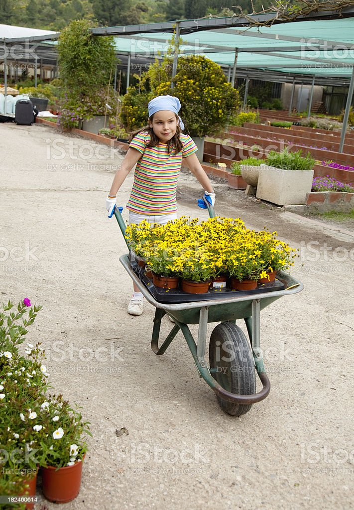 Little gardening royalty-free stock photo