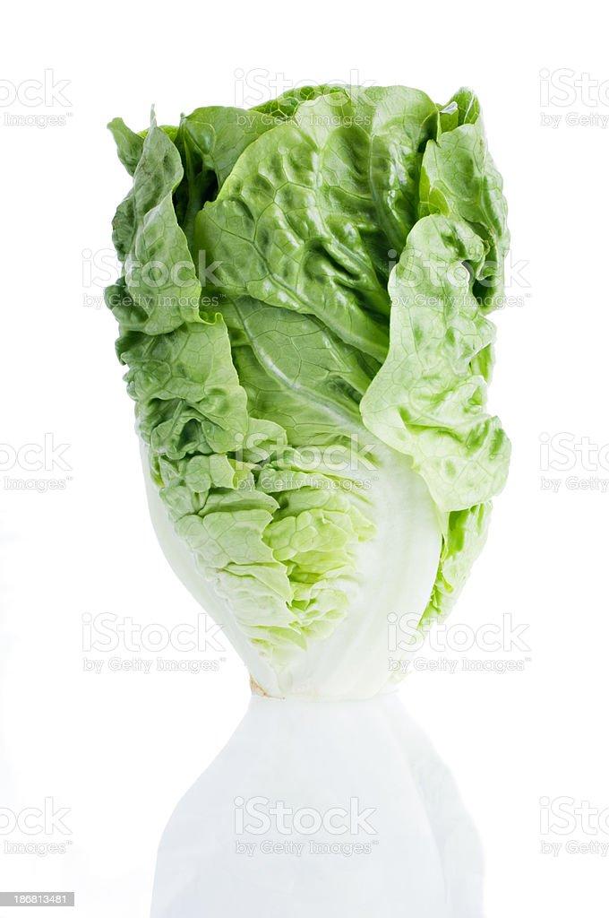 Little Gem Lettuce Isolated On White stock photo