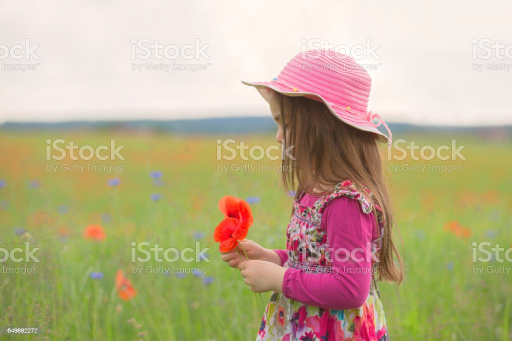 Little gilrl with hat in a flower field stock photo