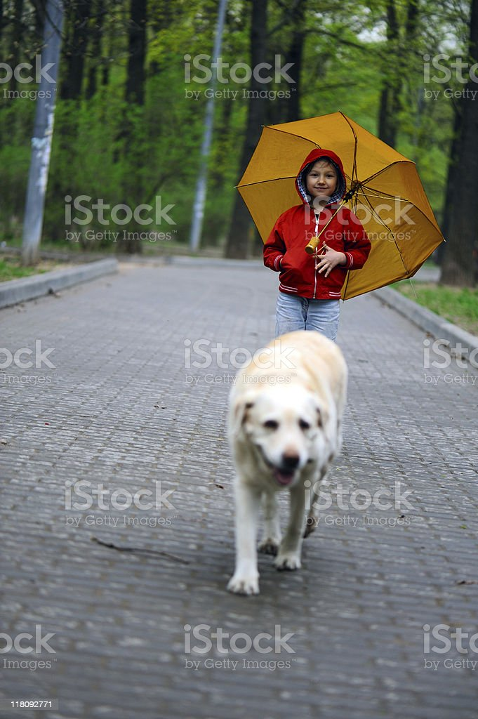 Little girl and a dog royalty-free stock photo