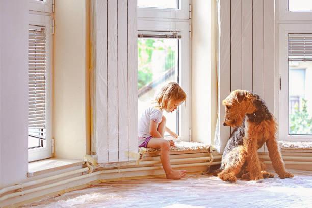 mädchen und hund langweilig sich während renovierungs ausgeführt wird - hundezubehör diy stock-fotos und bilder