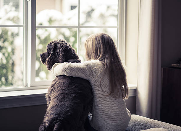 Little girl and her dog looking out the window. stock photo