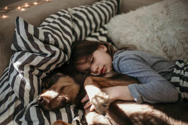 Niña y su perro durmiendo en la cama - foto de stock
