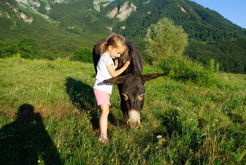 Little Girl And Her Donkey On The Mountain Pasture