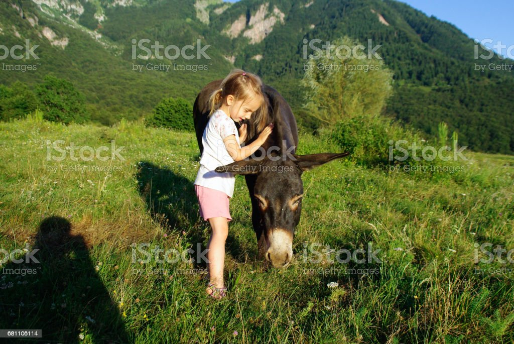 Little Girl And Her Donkey On The Mountain Pasture - foto stock
