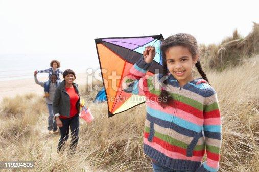 453383283 istock photo Little girl and her family flying kites 119204805