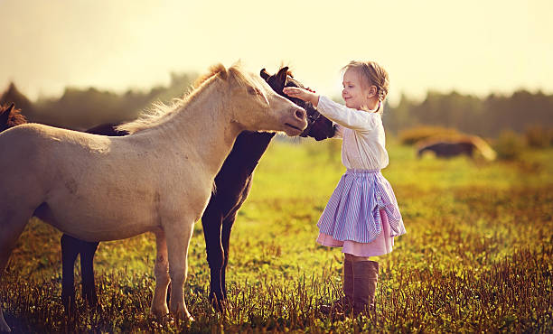 Little girl and ponies A cute little girl in jockey boots walking among tiny ponies in the field on a sunny summer day pony stock pictures, royalty-free photos & images
