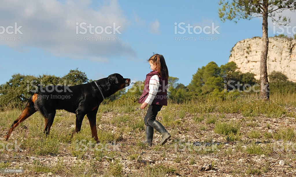little girl and rottweiler stock photo
