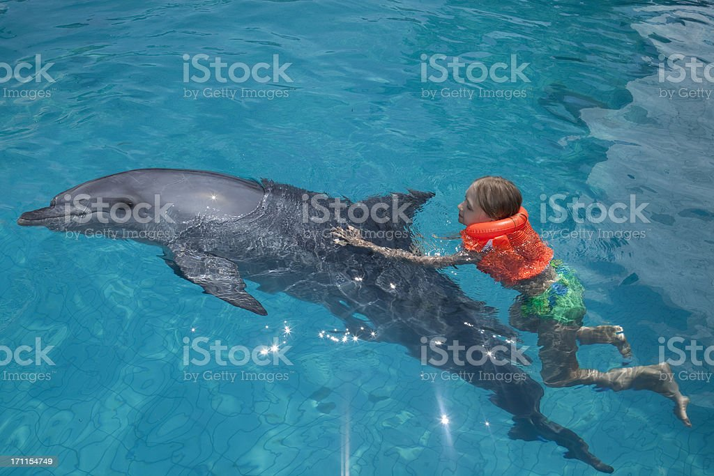 Little Girl and the Dolphin in  Swimming Pool. royalty-free stock photo
