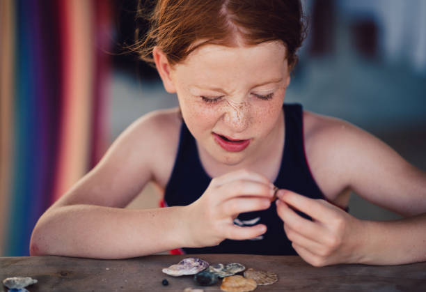 little girl assembling seashells on seaside vacation - little girl picking up sea shells at the beach stock pictures, royalty-free photos & images